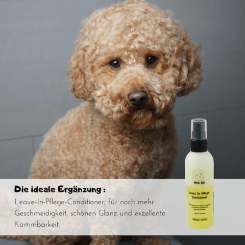Hundeshampoo mit Arganöl